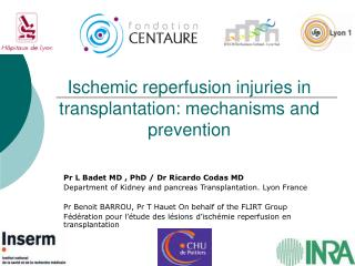 Ischemic reperfusion injuries in transplantation: mechanisms and prevention