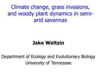 Climate change, grass invasions, and woody plant dynamics in semi- arid savannas