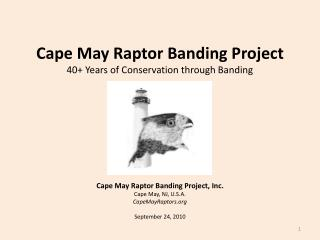 Cape May Raptor Banding Project 40+ Years of Conservation through Banding