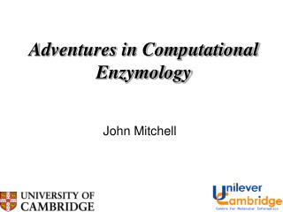 Adventures in Computational Enzymology