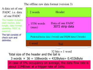 The offline raw data format (version 3)