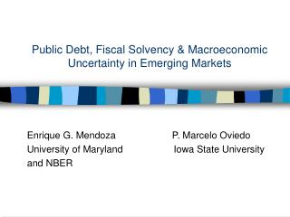 Public Debt, Fiscal Solvency & Macroeconomic Uncertainty in Emerging Markets