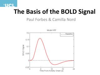 The Basis of the BOLD Signal