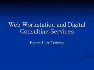 Web Workstation and Digital Consulting Services
