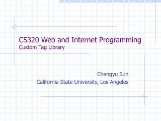 CS320 Web and Internet Programming Custom Tag Library