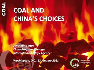 COAL AND  CHINA'S CHOICES