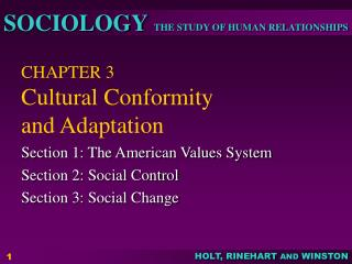 CHAPTER 3 Cultural Conformity  and Adaptation