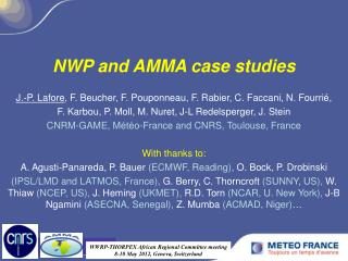 NWP and AMMA case studies