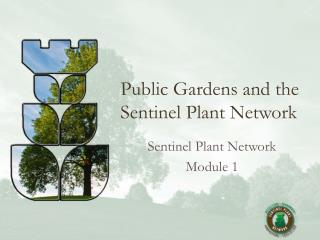 Public Gardens and the  Sentinel Plant Network