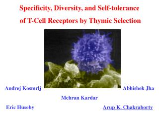 Specificity, Diversity, and Self-tolerance  of T-Cell Receptors by Thymic Selection