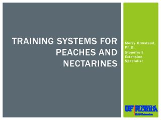 Training Systems for Peaches and Nectarines