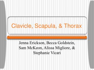 Clavicle, Scapula, & Thorax