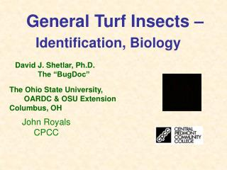 General Turf Insects –  Identification, Biology