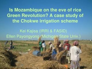 Is Mozambique on the eve of rice Green Revolution? A case study of the Chokwe irrigation scheme