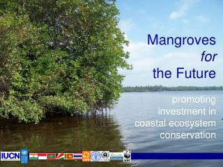 Mangroves for the Future promoting investment in coastal ecosystem conservation