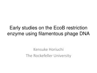 Early studies on the  EcoB  restriction enzyme  using filamentous phage DNA