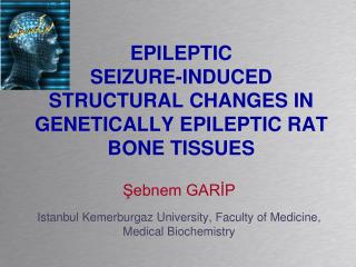 EPILEPTIC  SEIZURE-INDUCED STRUCTURAL CHANGES IN GENETICALLY EPILEPTIC RAT BONE TISSUES