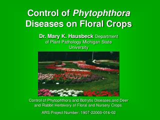 Control of  Phytophthora  Diseases on Floral Crops