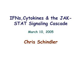 IFNs,Cytokines & the JAK-STAT Signaling Cascade March 10, 2005 Chris Schindler