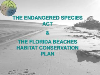 THE ENDANGERED SPECIES ACT  &  THE FLORIDA BEACHES HABITAT CONSERVATION PLAN