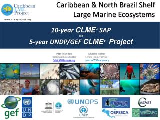 Caribbean  & North Brazil Shelf  Large  Marine  Ecosystems 10-year  CLME +  SAP and