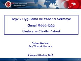 Teşvik Uygulama ve Yabancı Sermaye  Genel Müdürlüğü Uluslararası İlişkiler Dairesi