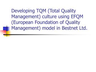 Developing TQM Total Quality Management culture using EFQM European Foundation of Quality Management model in Bestnet Lt