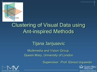 Clustering of Visual Data using  Ant-inspired Methods