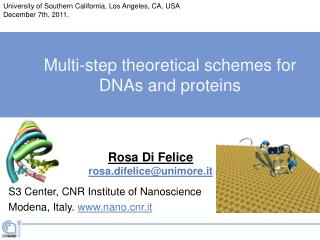 Multi-step theoretical schemes for DNAs and proteins