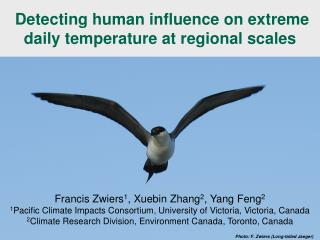 Detecting human influence on extreme daily temperature at regional scales
