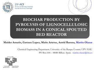 BIOCHAR PRODUCTION BY PYROLYSIS OF LIGNOCELLULOSIC BIOMASS IN A CONICAL SPOUTED BED REACTOR