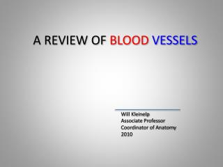 A REVIEW OF  BLOOD  VESSELS