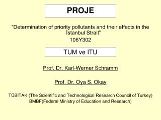 """Determination of priority pollutants and their effects in the İstanbul Strait""  106Y302"