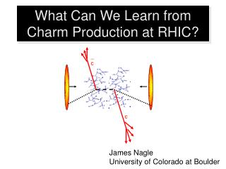 What Can We Learn from Charm Production at RHIC?
