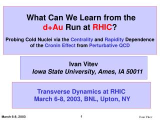 What Can We Learn from the d+Au Run at RHIC ?