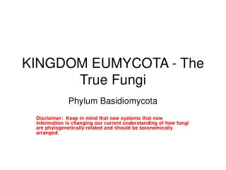 KINGDOM EUMYCOTA - The True Fungi