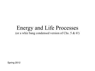 Energy and Life Processes (or a whiz bang condensed version of Chs. 5 & 6!)