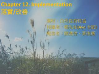 Chapter 12. Implementation  落實 / 改善