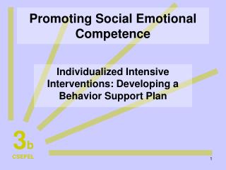 Promoting Social Emotional Competence