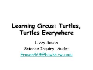 Learning Circus: Turtles, Turtles Everywhere