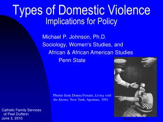 Types of Domestic Violence Implications for Policy