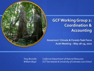 GCF Working Group 2:  Coordination &  Accounting