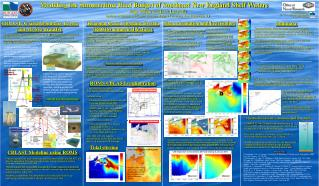 Modeling the Summertime Heat Budget of Southeast New England Shelf Waters