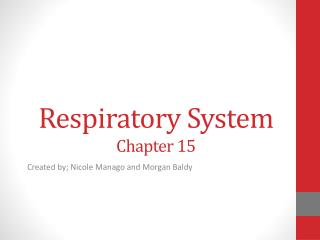 Respiratory  System Chapter 15