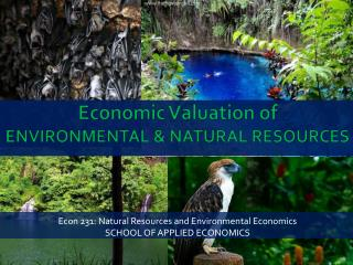 Economic  V aluation of  ENVIRONMENTAL & NATURAL RESOURCES