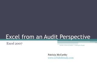 Excel from  an Audit Perspective