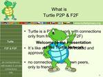 Turtle P2P  F2F