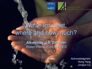 Water  for  what, where  and how much ?