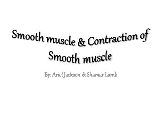 Smooth muscle & Contraction of Smooth muscle
