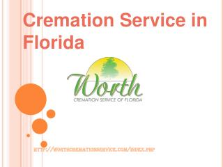 cremation services in florida